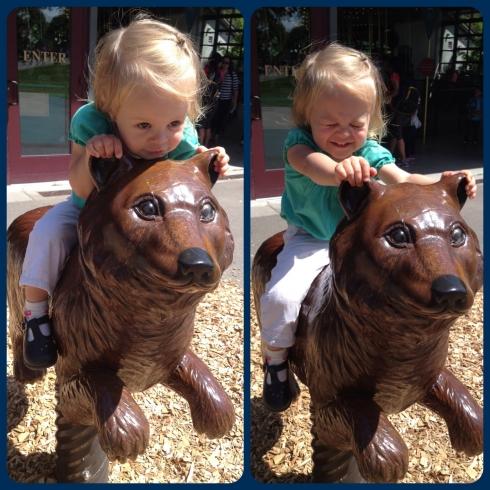 Thrilling Bear Ride