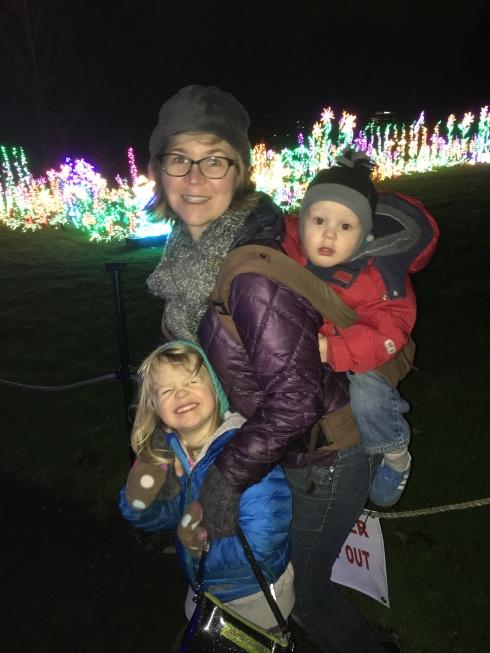 Holiday Garden D'Lights