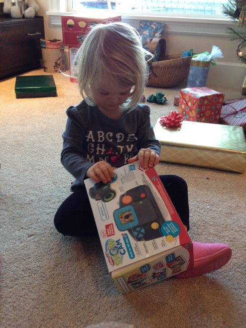 Holiday Shirt and Toys