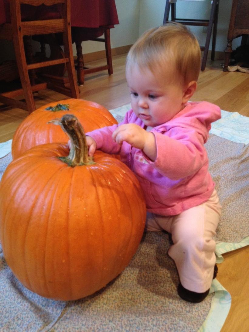 Pumpkin Inspection