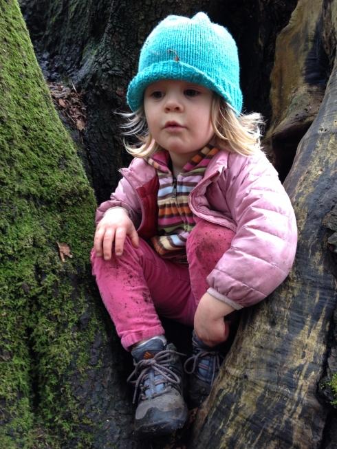 Cutie in a Tree