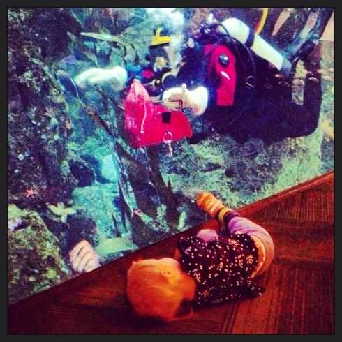 Look at me Diver