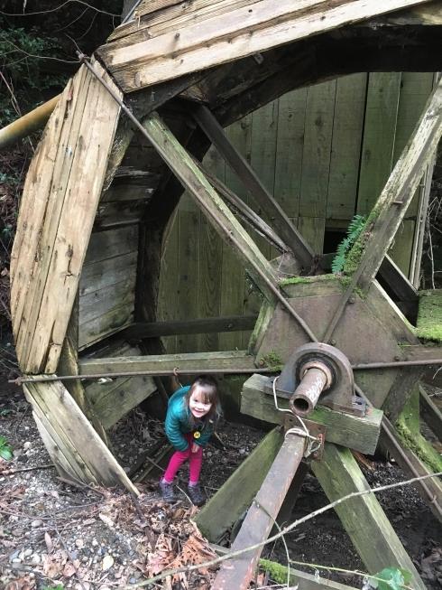 Secret Waterwheel in Carkeek Park